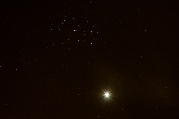 Venus and the Pleiades in conjunction; Credit © David Churchward